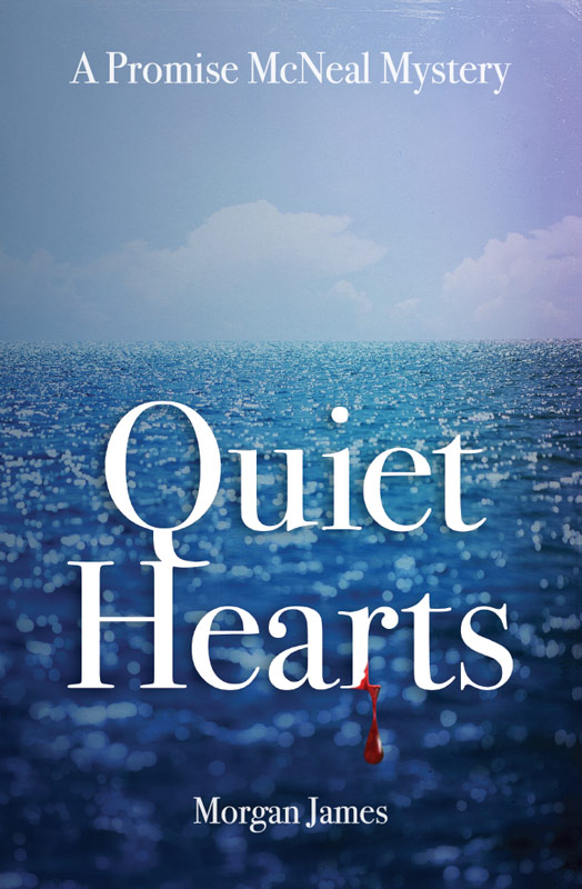 Quiet Hearts Book Cover
